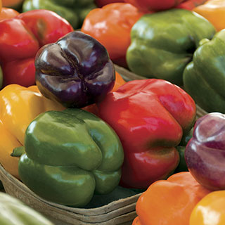 Sweet Rainbow Pepper Mix (pack of 3)