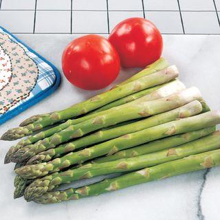 Asparagus Jersey Supreme Hybrid Image