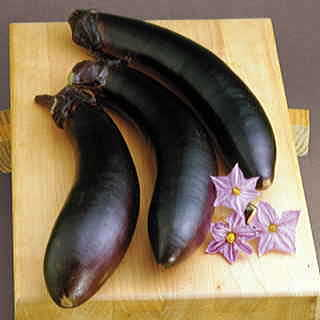 Swallow Hybrid Eggplant Seeds