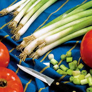 Parade Green Onion Seeds