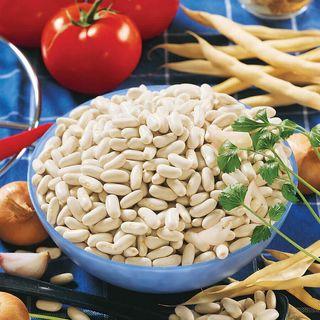 Cannellini Bush Bean Seeds