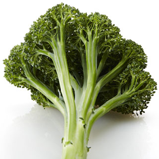 Artwork Hybrid Broccoli Seeds Image