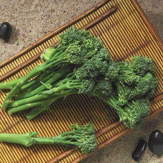 Aspabroc Hybrid Broccoli Seeds Image