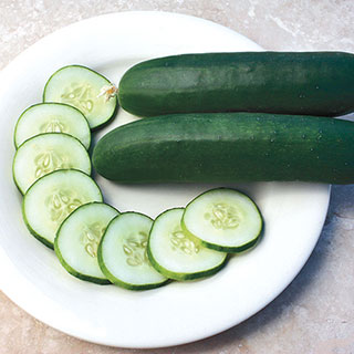 Slice More Hybrid Cucumber Seeds