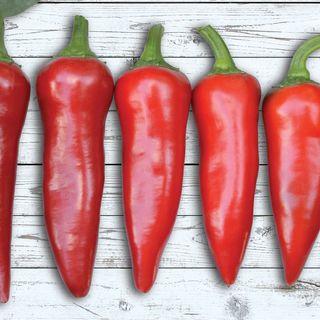 Flaming Flare Hybrid Pepper Seeds