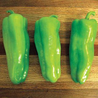 Grenada Hybrid Pepper Seeds