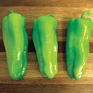 Grenada Hybrid Pepper Seeds