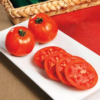 Red Pride Hybrid Tomato Seeds