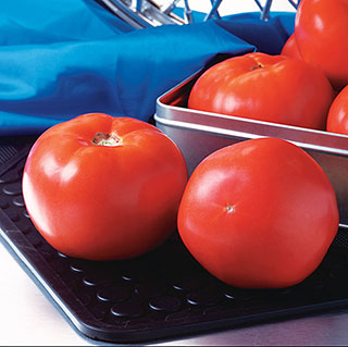 Rocky Top Tomato Seeds