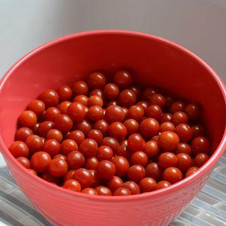 Candyland Red Hybrid Tomato Seeds Image