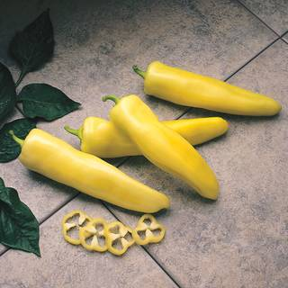 Pageant Hybrid Pepper Seeds