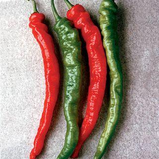 Pepper Mesilla