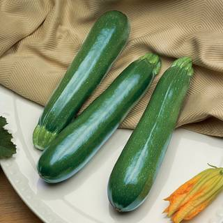 Spineless Perfection Zucchini