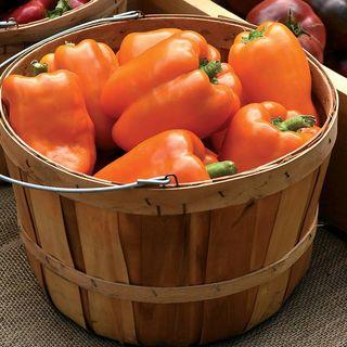 Bell Pepper Orange Marmalade