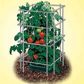 Parks Wire Tomato Pen - Pack of 3