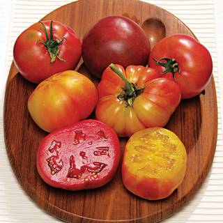 Rainbow Blend Heirloom Tomato Plants (pack of 3)