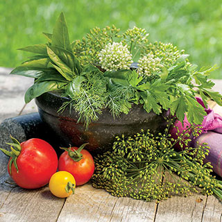 Parks Culinary Herb Seed Collection