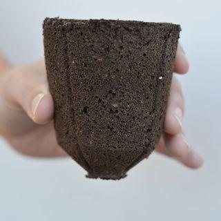 16 Refill Sponges for Mega-cell Dome Seed Starting Kit
