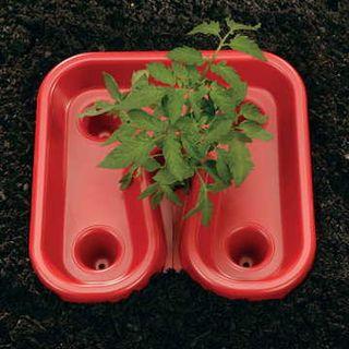 Red Tomato Automator Tray™