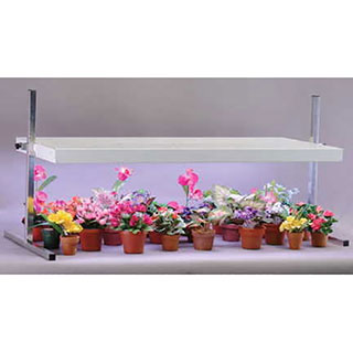 52-Inch Tabletop Plant Light