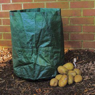 Potato Growin Bag