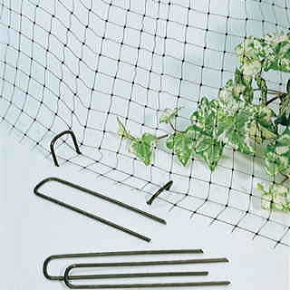 Parks Anti-Bird Net and Ground Anchors