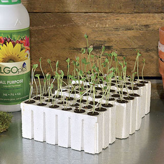 Park-Starts® Seed Starters