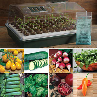 Parks Bio Dome & Seed Kit Collections