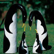 Penguin Gourd Seeds image