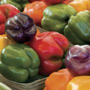 Park's Sweet Rainbow Mix Pepper Seeds (P)Pkt of 25 seeds image