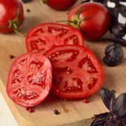 Better Bush Hybrid Tomato Seeds Pack of 250 image