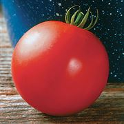 Mountain Fresh Plus Hybrid Tomato Seeds image