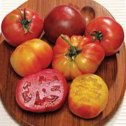 Rainbow Blend Heirloom Tomato Seeds image