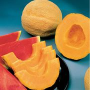 Park's Whopper Hybrid Cantaloupe Seeds image