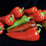 Carmen Hybrid Pepper Seeds