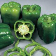 Colossal Hybrid Pepper Seeds Thumb