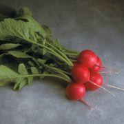 Cherriette Hybrid Radish Seeds image