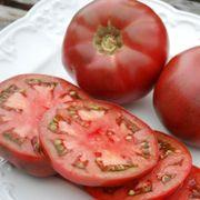Cherokee Purple Organic Tomato Seeds Alternate Image 1