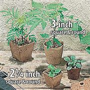 Jiffypots® 3-inch Round Biodegradable (Pack of 22) Alternate Image 1