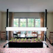 24-inch Tabletop Plant Light
