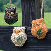 Hoots Seed Ornaments image