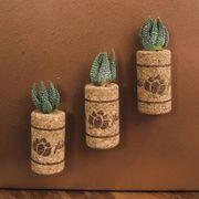 Succulent Plant in Magnetic Wine Cork - Set of 3 Alternate Image 2