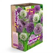 Allium Garden Box Bulb Mix Alternate Image 1