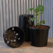 Nursery Pot Black - Gallon (Pack of 10) Alternate Image 1