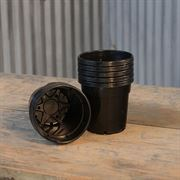 Black Nursery Pot-Quarts 12-PK