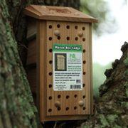 Songbird Essentials Mason Bee Lodge Thumb
