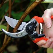 Bypass Secateurs