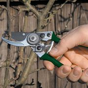 Pocket Pruner