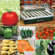 Parks Vegetable Lovers Garden Collection