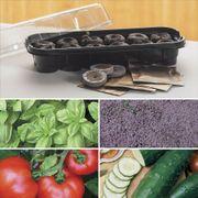 Park's Windowsill Herb & Veggie Starter Kit image